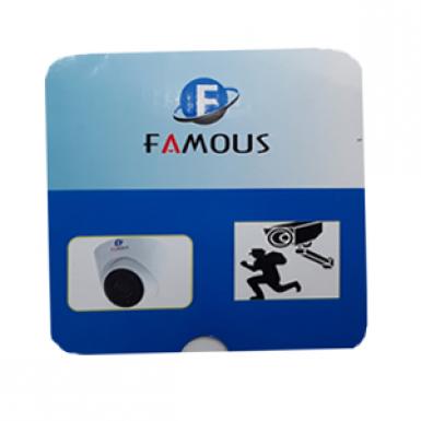 FV-3002 ,2 MP