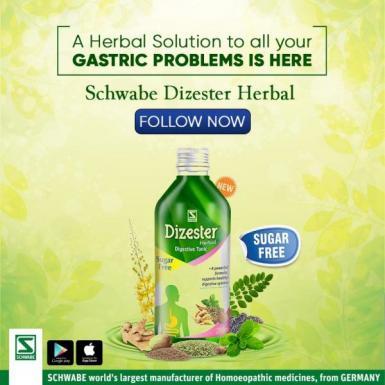 Dizester Herbal Digestive Tonic - Dr. Willmar Schwabe